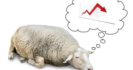 Do You Want to Be an Investor or a Sheep?