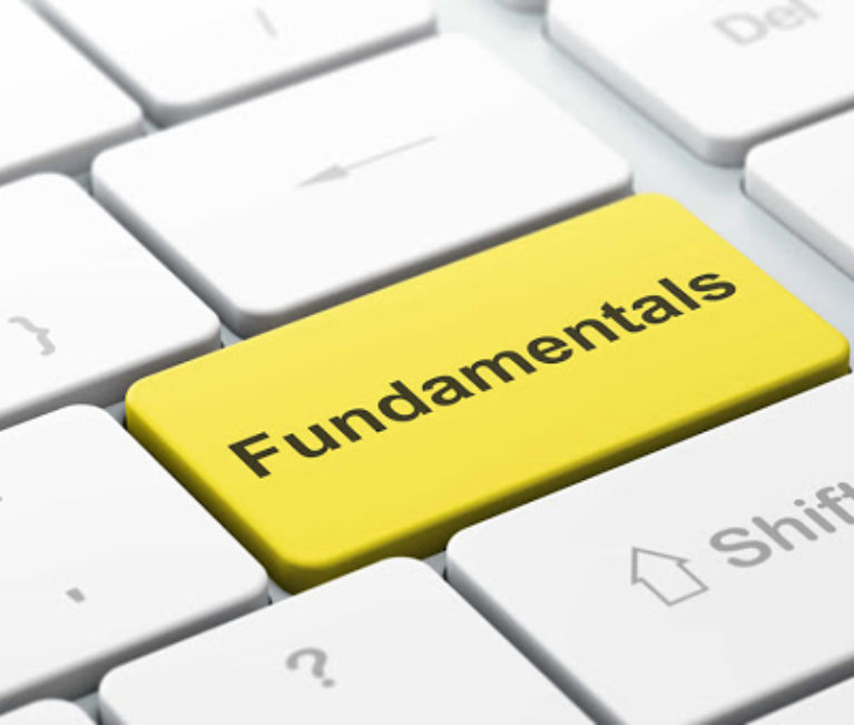 Do Fundamentals Even Matter Anymore?